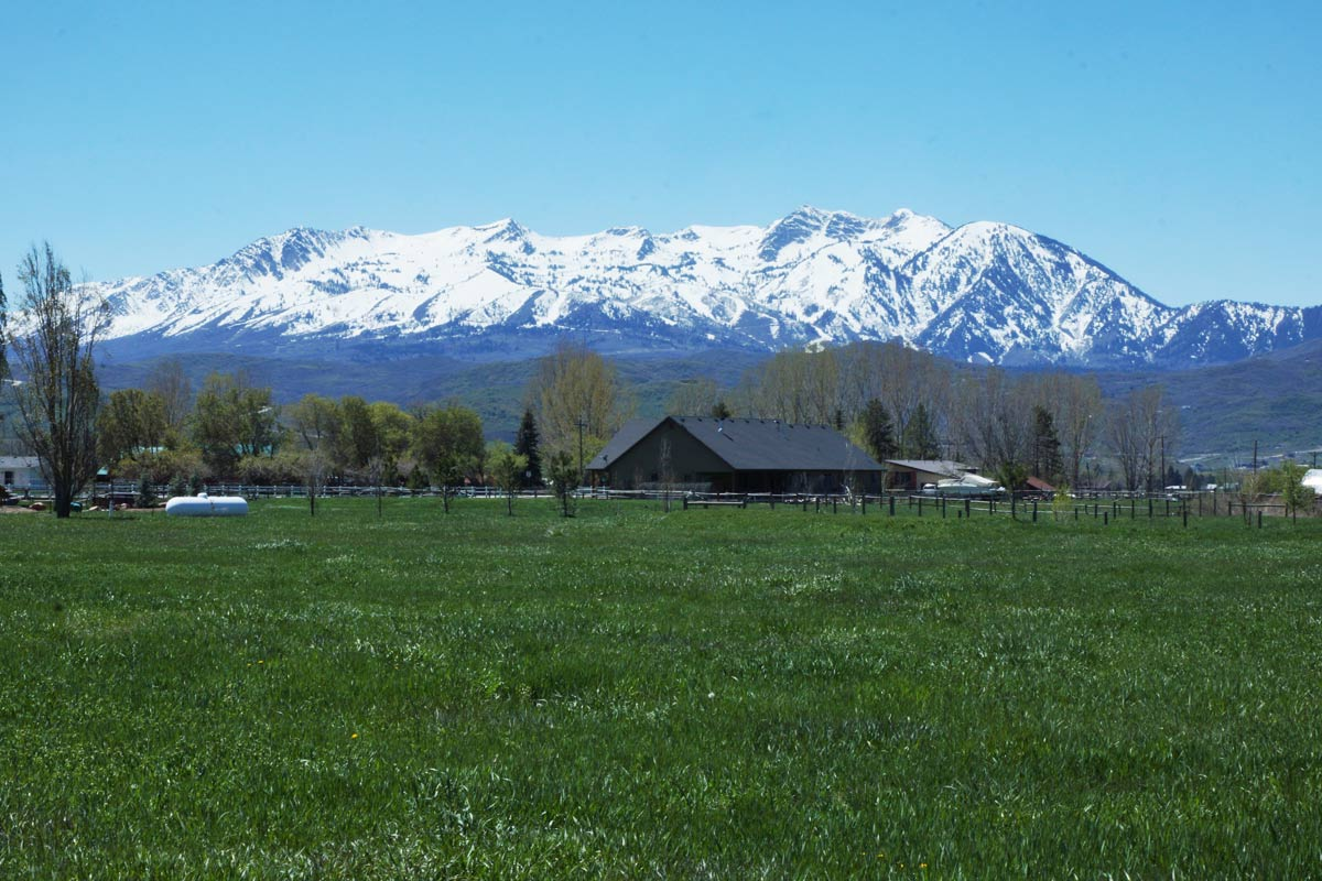Huntsville-Meadows-Snowbasin-View.jpg